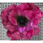Flowers no 4- Flower 02
