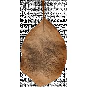 Autumn Day- Leaf 01