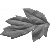 Design Pieces No. 4 Templates- Leaf Template 01