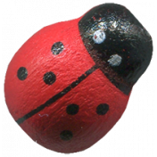 Design Pieces No.5- Ladybug