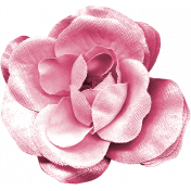 KMRD-202105DC-Cherry Blossoms-flower2
