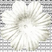 KMRD-My Favorite Truck-flower06