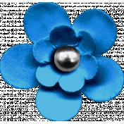 KMRD-Dirty McFilthy-flower03