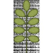 KMRD-Cracks,Bams & Dots-leaves1