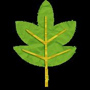 KMRD-Colorful Autumn-leaf-green