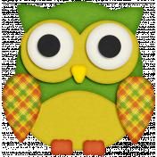 KMRD-Colorful Autumn-owl