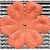brishti_flower 2-4