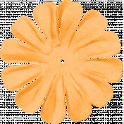 brishti_flower 3-5