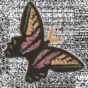 KraftButterflies_butterfly 4