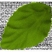HappyBirthday_leaf