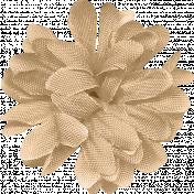 ErodedHues_flower 1