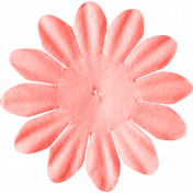 ps_paulinethompson_SLSB_flower 1-3