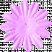 ps_paulinethompson_SLSB_flower 1-4