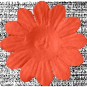 ps_paulinethompson_Bright&Beautiful_flower 3-3