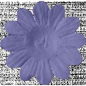 ps_paulinethompson_Bright&Beautiful_flower 3-4