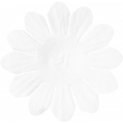 ps_paulinethompson_Bright&Beautiful_flower 3-7