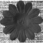 ps_paulinethompson_Bright&Beautiful_flower 3-8