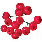 Christmas Day- Berries