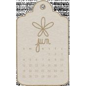 Toolbox Calendar- June Doodle Date Tag