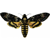 Bad Day- Butterfly