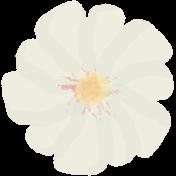 Life In Full Bloom- Painted White Flower 1