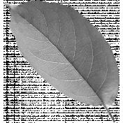 Leaf Template 043
