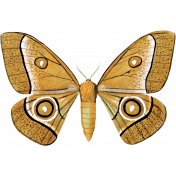 A Mother's Love- Butterfly- Gold and Black