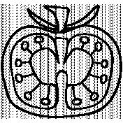 Fruit Doodle Template 008