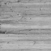 Wood Texture 024
