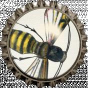 Picnic Day- Wasp Cap
