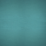 Picnic Day- Dark Teal Solid Paper