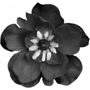 Silk Flower Template 015