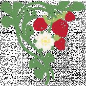 Picnic Day- Chalk Strawberry