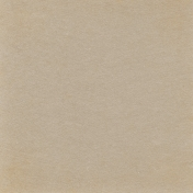 Picnic Day- Light Brown 2 Solid Paper
