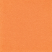 Picnic Day- Light Orange 2 Solid Paper
