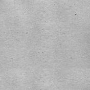 Summer Day- Medium Gray Solid Paper