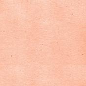 Summer Day- Orange Solid Paper