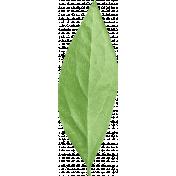 Summer Day- Leaf 3