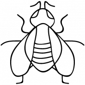 Insect Doodle Template 010