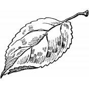 Leaf Stamp Template 004