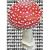 Back To Nature- Mushroom