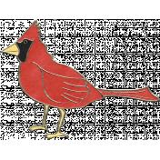 Back To Nature - Cardinal Doodle