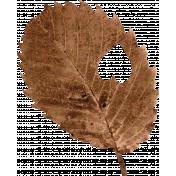 Back To Nature- Brown Leaf