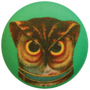 School of Art- Owl Button
