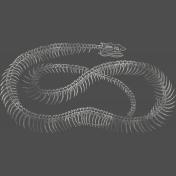 Chills & Thrills- Snake Chalk Skeleton Stamp 1