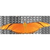 Unwind Mini Kit- Orange Butterfly
