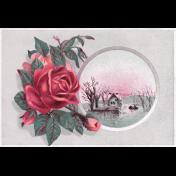 Cozy Day- Rose Postcard