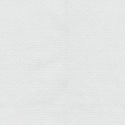 Winter Fun- White Polka Dot Paper