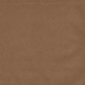 Winter Fun- Solid Brown Paper