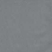 Winter Fun- Solid Light Gray Paper